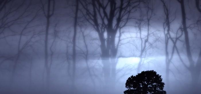 haunting_shadow